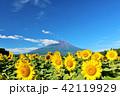 夏を彩る富士山とひまわり 42119929
