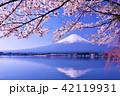 春を彩る逆さ富士と桜 42119931