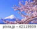 富士山 山 花の写真 42119939