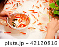 金魚すくい 42120816