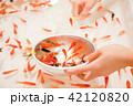 金魚すくい 42120820