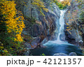 昇仙峡 仙娥滝 滝の写真 42121357