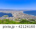 函館山から見る函館市街 42124160