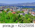 函館 風景 晴れの写真 42125056