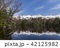 知床五湖 知床 風景の写真 42125982