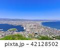 函館山から見る函館市街 42128502