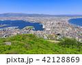 函館山 市街 眺望の写真 42128869