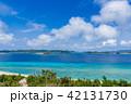 ニシ浜 阿嘉島 海の写真 42131730