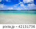 ニシ浜 阿嘉島 海の写真 42131736