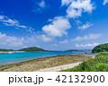 阿嘉島 海 風景の写真 42132900