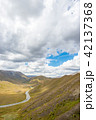 道路 ニュージーランド 風景の写真 42137368