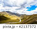 道路 ニュージーランド 風景の写真 42137372