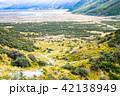 道路 ニュージーランド 風景の写真 42138949