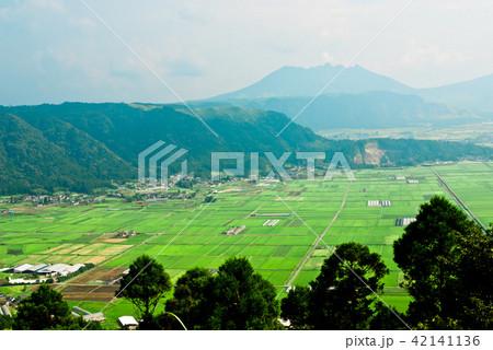 阿蘇のカルデラの広々とした田んぼと根子岳と外輪山を見る。 42141136
