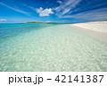 石垣島 海 夏の写真 42141387