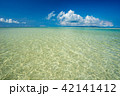 石垣島 海 夏の写真 42141412