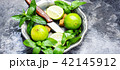 ミント グリーン 緑色の写真 42145912