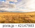 広大なニュージーランドの風景 42147983