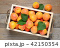 Apricots in wooden box top view 42150354
