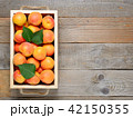 Apricots in box on wooden table 42150355