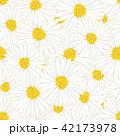 ヒナギク 花 ベクターのイラスト 42173978