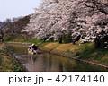 4月 桜咲く近江八幡水郷めぐり 42174140
