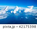 飛行機から見える景色 (東京湾) 42175398