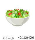 サラダ サラダ 食のイラスト 42180429