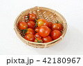 ミニトマト 42180967