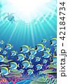 海の中の風景 珊瑚礁 サンゴ礁 魚の群れ 42184734