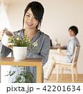 植物に水やりをする女性 42201634