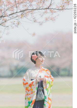 Sakura 42203226