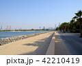 海外 DUBAI  (ドバイ)パーム・アイランド 42210419