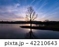 シルエット 水辺の木 青紫 横 42210643