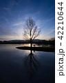 シルエット 水辺の木 青 縦 42210644