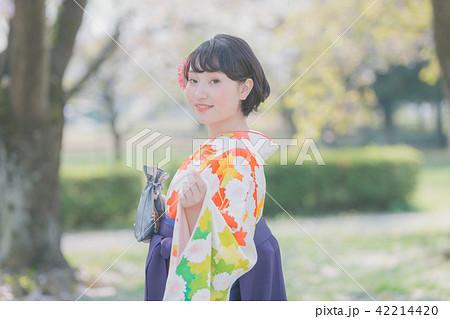 Sakura 42214420