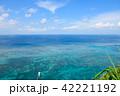 サンゴ礁 海 夏 42221192