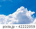 夏の青空 42222059