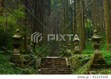 上色見熊野座神社 42224300