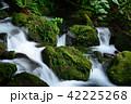 渓流 水流 河川の写真 42225268