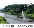 夏の胎内川 42225390