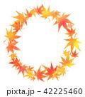 紅葉 楓 葉っぱのイラスト 42225460
