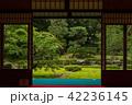 旧三井家下鴨別邸 庭 庭園の写真 42236145