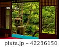 旧三井家下鴨別邸 庭 庭園の写真 42236150
