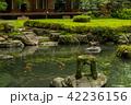 旧三井家下鴨別邸 庭 庭園の写真 42236156