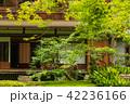旧三井家下鴨別邸 庭 庭園の写真 42236166
