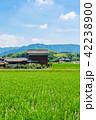 田園 風景 晴れの写真 42238900
