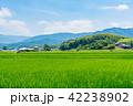 田園 風景 晴れの写真 42238902