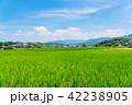 田園 風景 晴れの写真 42238905