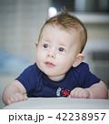 Sweet baby boy 42238957